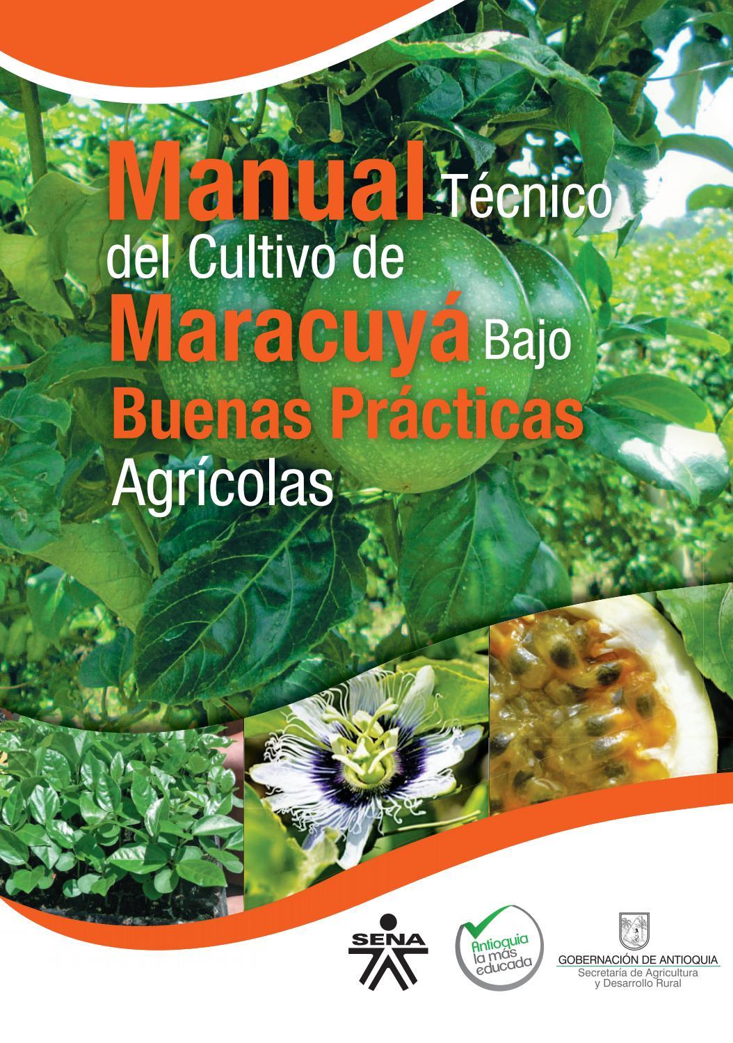 Manual de buenas practicas agricolas aguacate para
