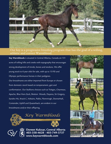 2017 CWHBA Stallion Directory by Canadian Warmblood Horse