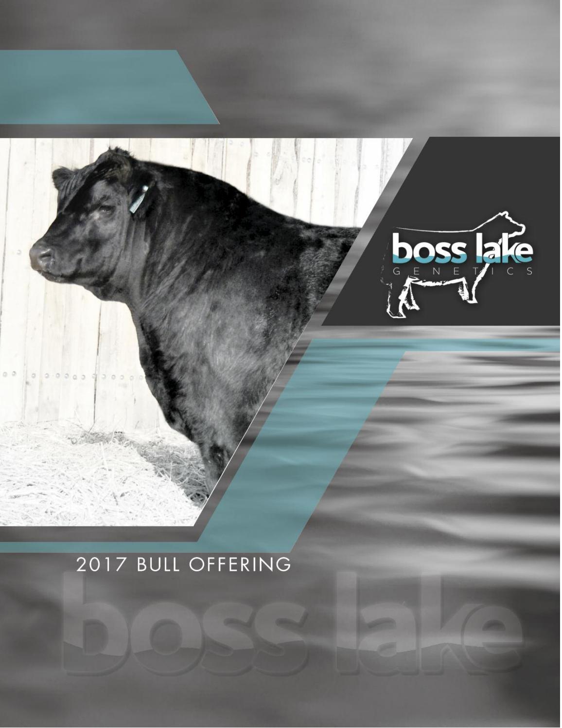 Boss Lake 2017 Private Treaty Bull Offering by Kim Matthews