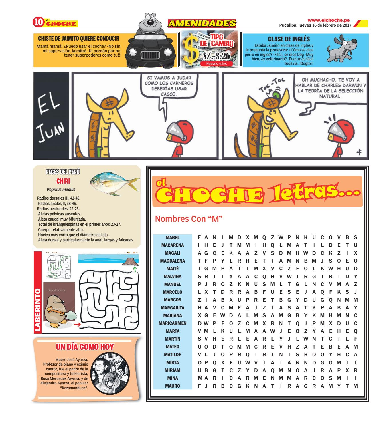 El Choche 16 de febrero del 2017 by Diario El Choche - issuu
