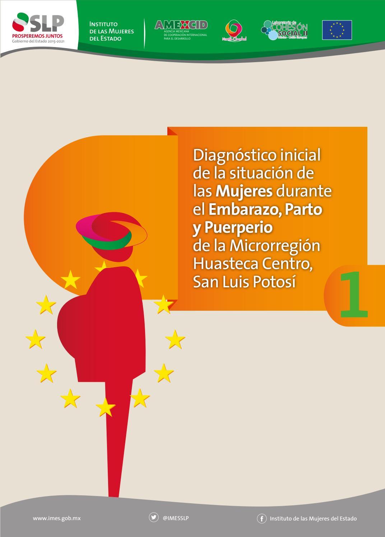 Diagnóstico inicial de la situación de las mujeres durante el embarazo parto  y puerperio r huasteca by imes.gob.mx - issuu