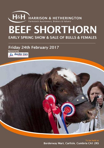 Beef shorthorn feb 240217 by Harrison & Hetherington - issuu