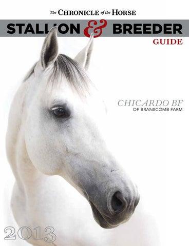 The Australian Arabian Horse News by Vink Publishing - issuu f9032bfa043e2