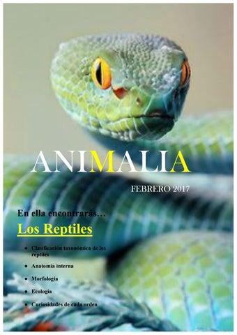 Animalia: Los Reptiles by Alejandra - issuu
