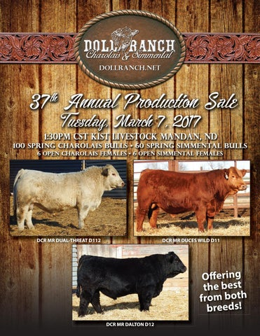 Doll Ranch 37th Annual Production Sale 2017