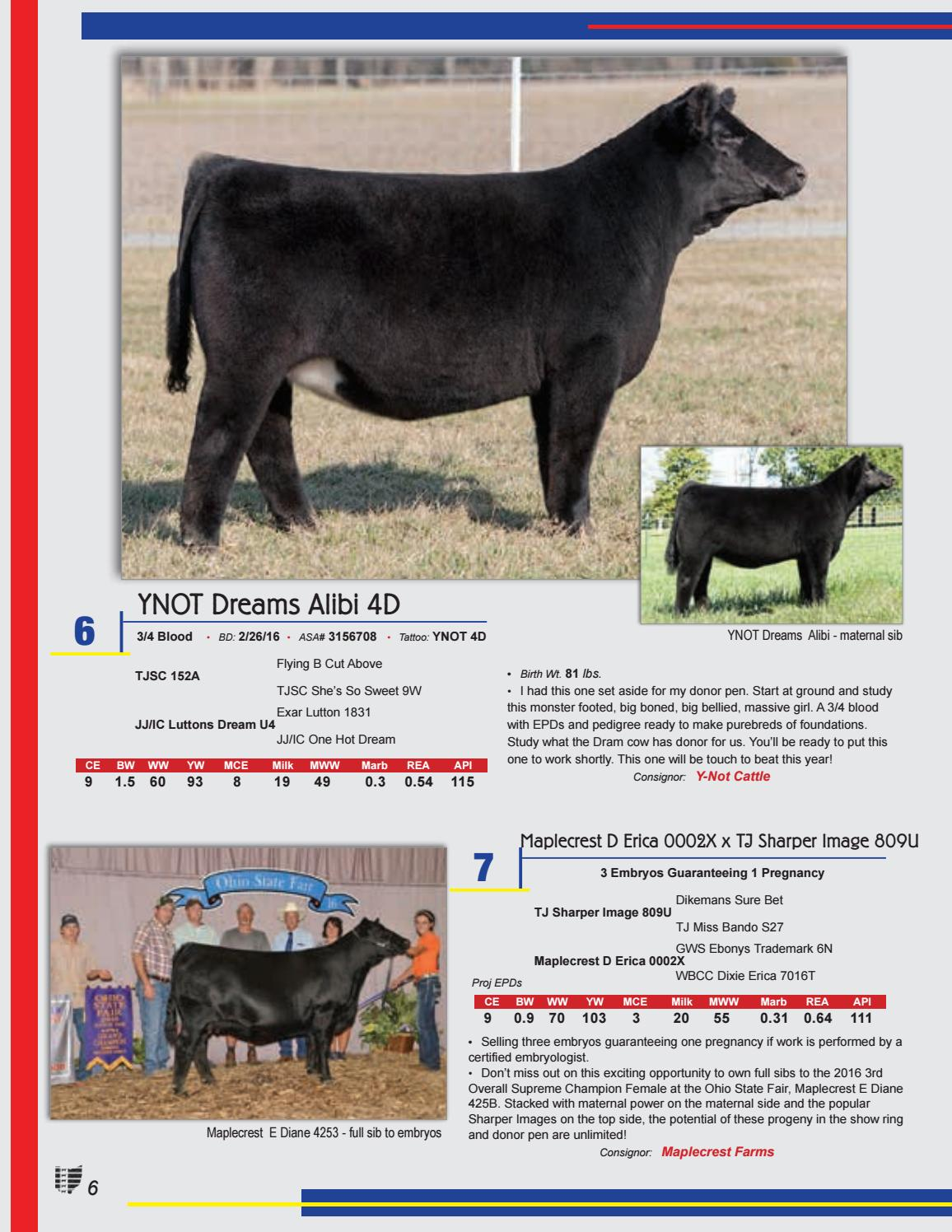 Ohio Beef Expo Eastern Spring Simmental Sale 2017