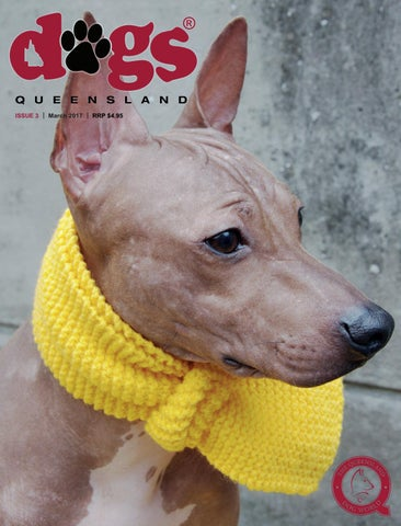 Dogs queensland the queensland dog world issue 3 march 2017 page 1 solutioingenieria Gallery