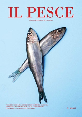 Siti Web di incontri con pesci in esso