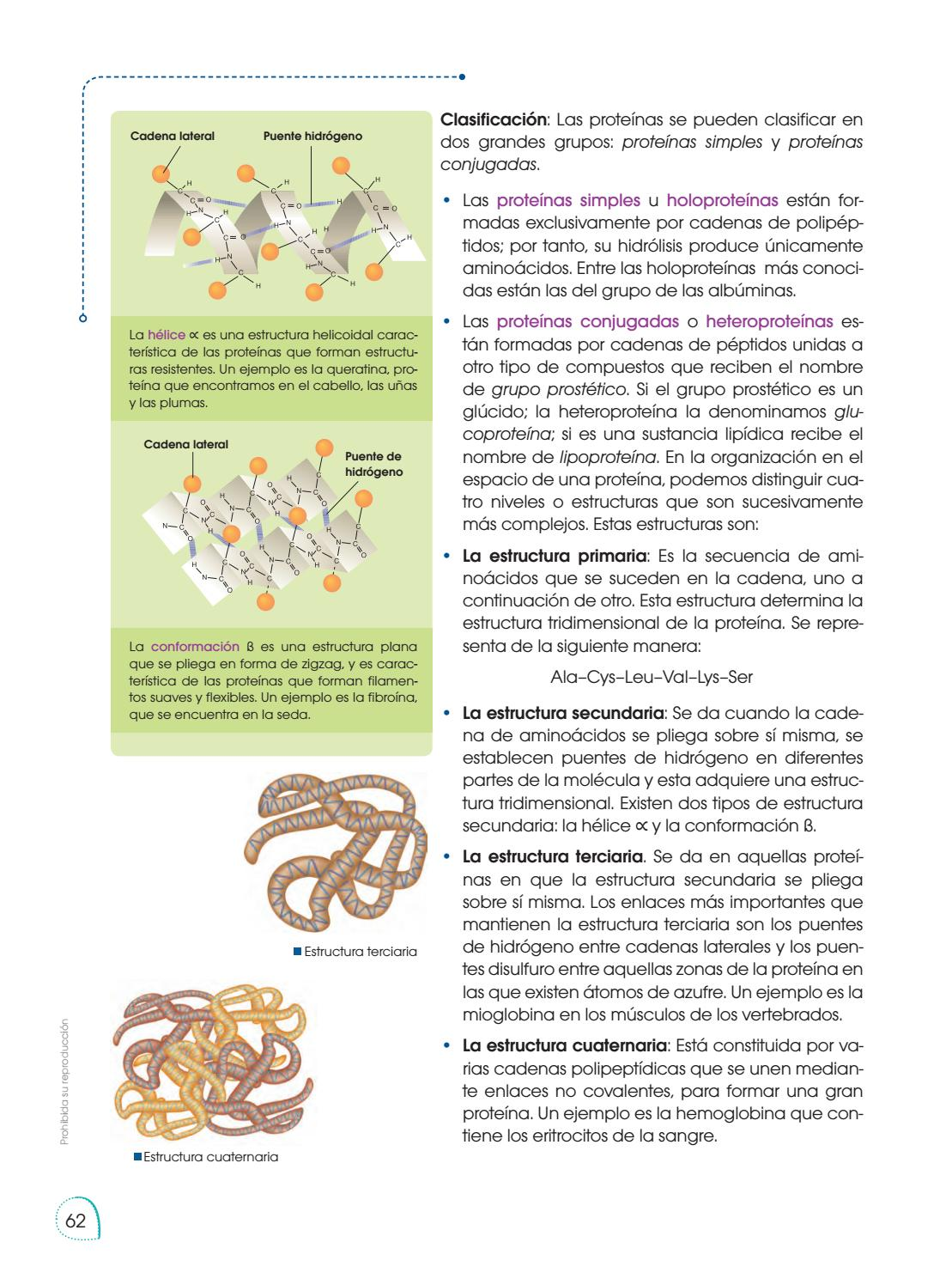Biologia 1 Bgu By Margarita Sandoval Issuu