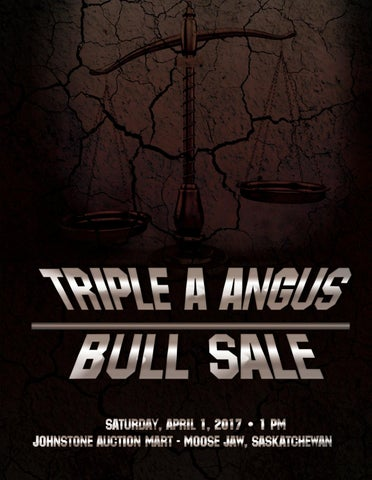 35382ea5872 Triple A Angus Bull Sale by Today s Publishing Inc. - issuu