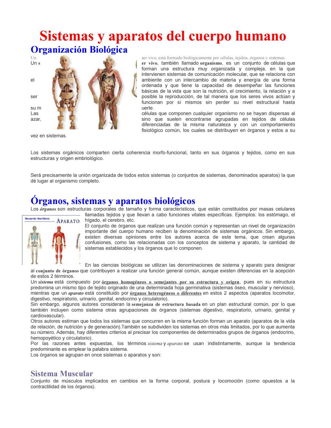 Sistemas y aparatos del cuerpo humano by Carlos Baas Polanco - issuu