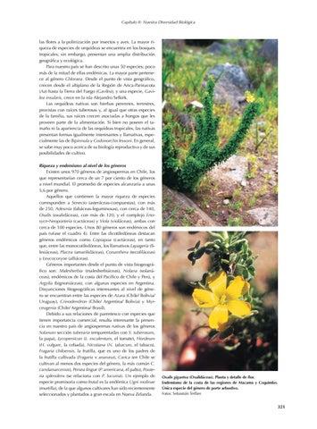 Gaviota de franklin reproduccion asexual de las plantas