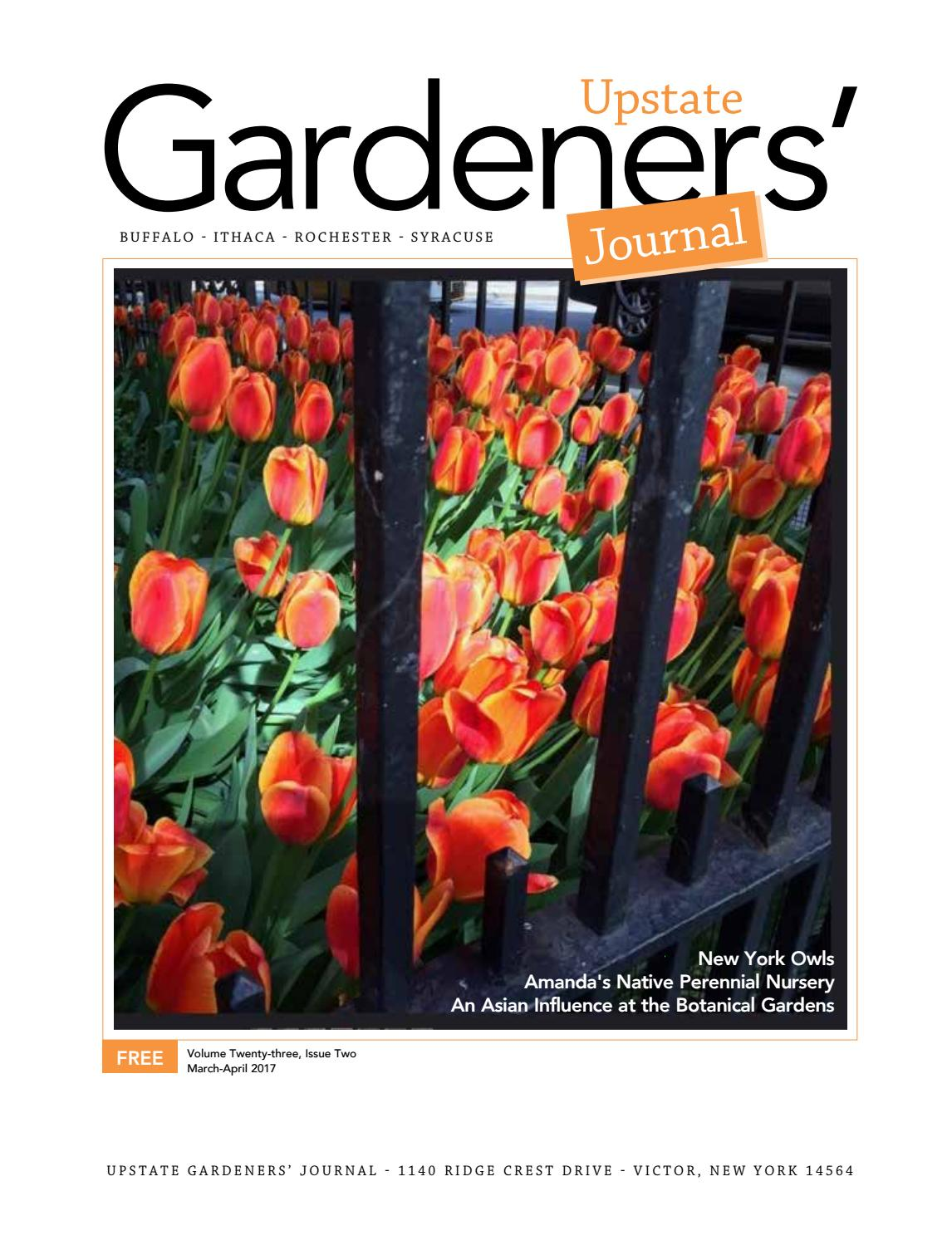 Upstate Gardenersu0027 Journal March April 2017 By Upstate Gardenersu0027 Journal    Issuu