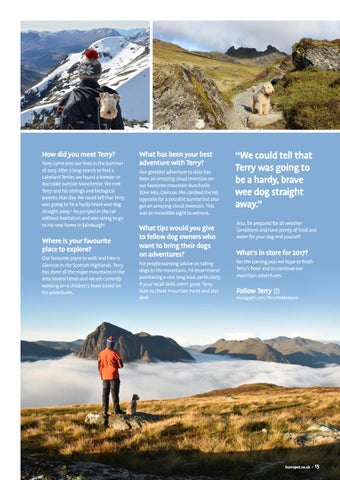 Page 15 of Meet Terry the Lakeland Terrier