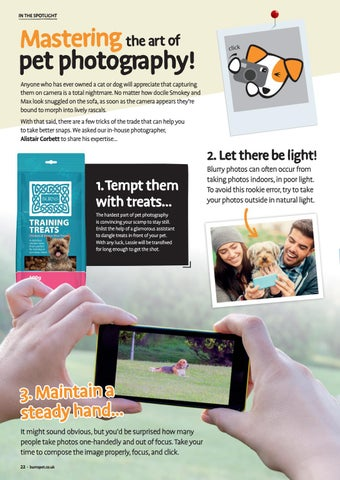 Page 22 of Mastering the Art of Pet Photography