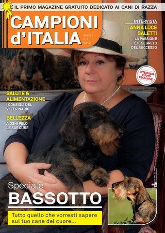 Cani Campioni Ditalia 1 Bassotto By Cani Campioni Ditalia Issuu