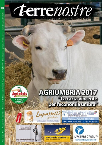 Terrenostre Marzo 2017 by Terrenostre Terrenostre - issuu 8cb114adabe