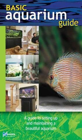 Able Aquarium High-quality Acrylic Fish Breeding Isolation Box 1.5mm Hole 2019 New Fashion Style Online Cleaning & Maintenance Fish & Aquariums