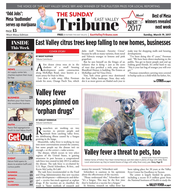 East Valley Tribune West Mesa Edition