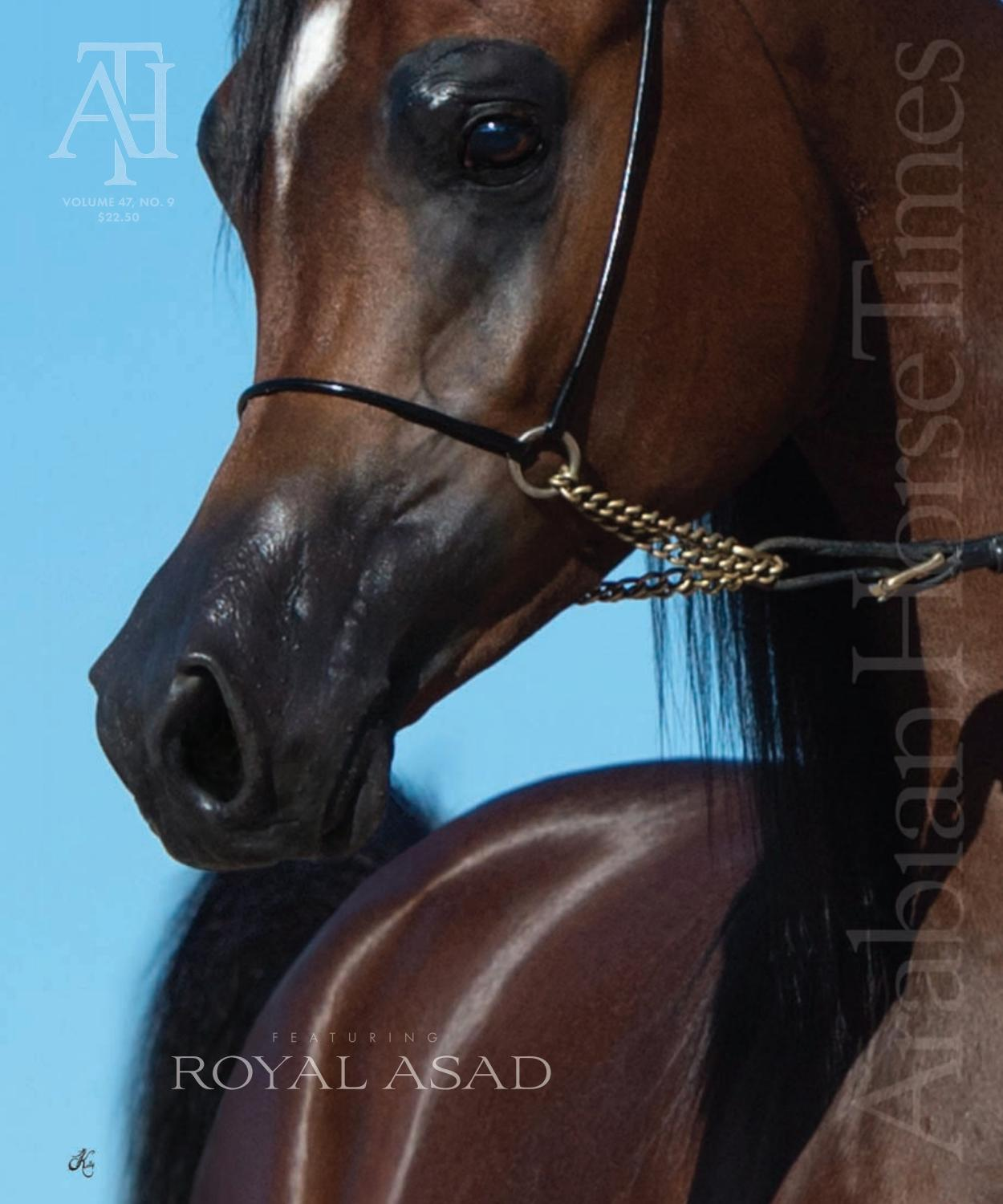 Arabian Horse Times Vol47 No9 Issue4 By Arabian Horse Times Issuu