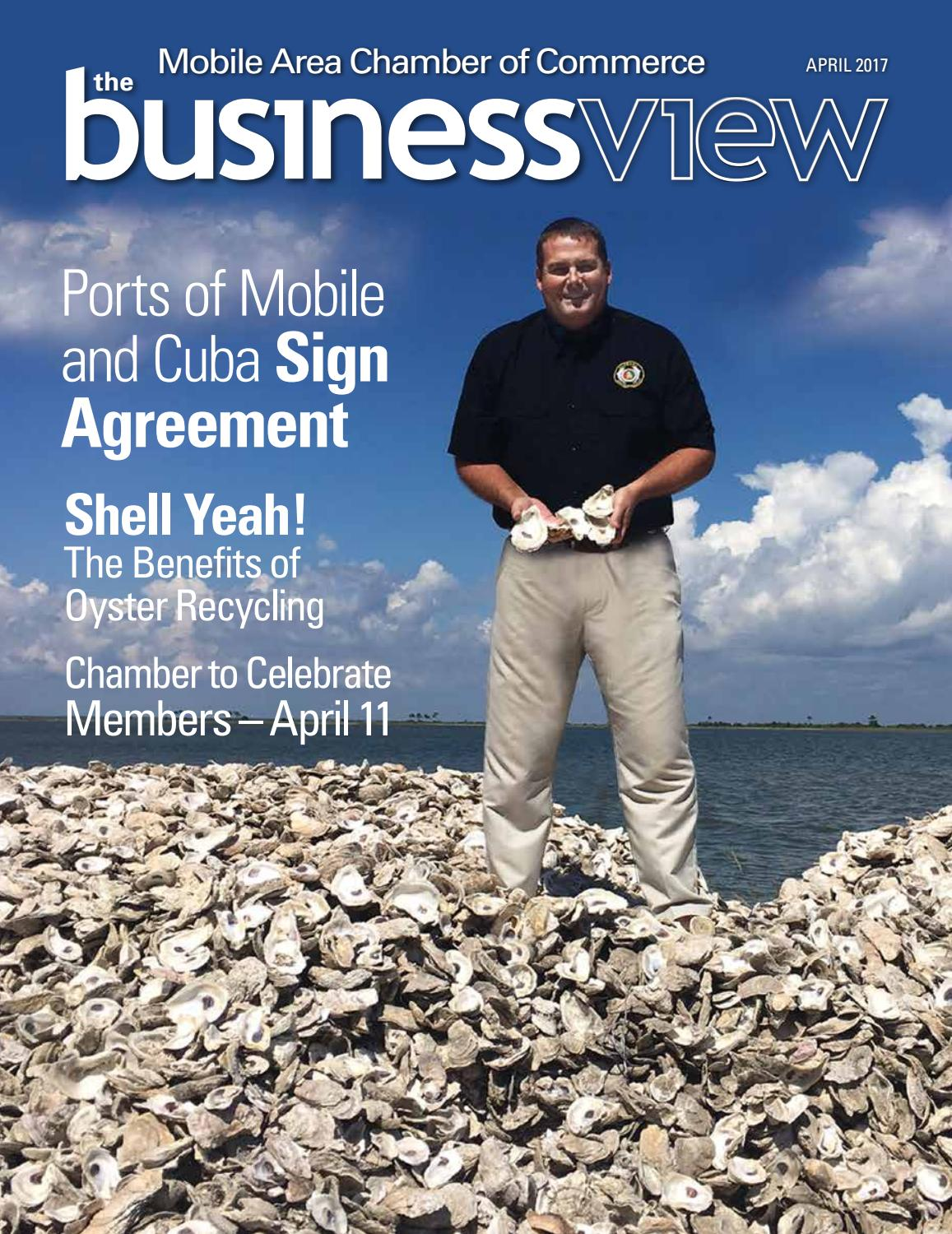 The Business View - April 2017 by Mobile Area Chamber of Commerce - issuu