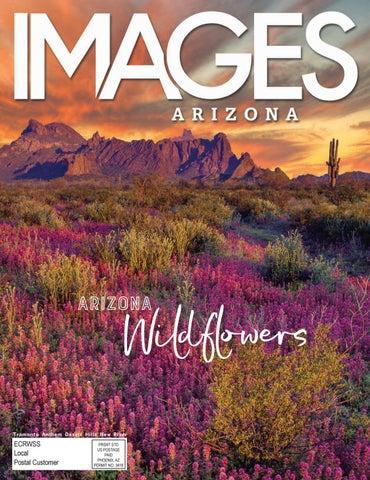 Images Arizona Anthem March 2017 Issue By Images Arizona