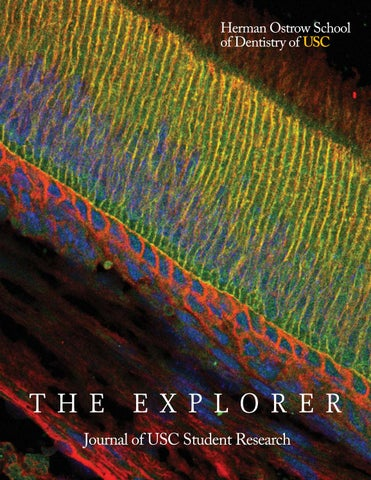 The Explorer 2017 by Herman Ostrow School of Dentistry of USC - issuu 5399118dd01