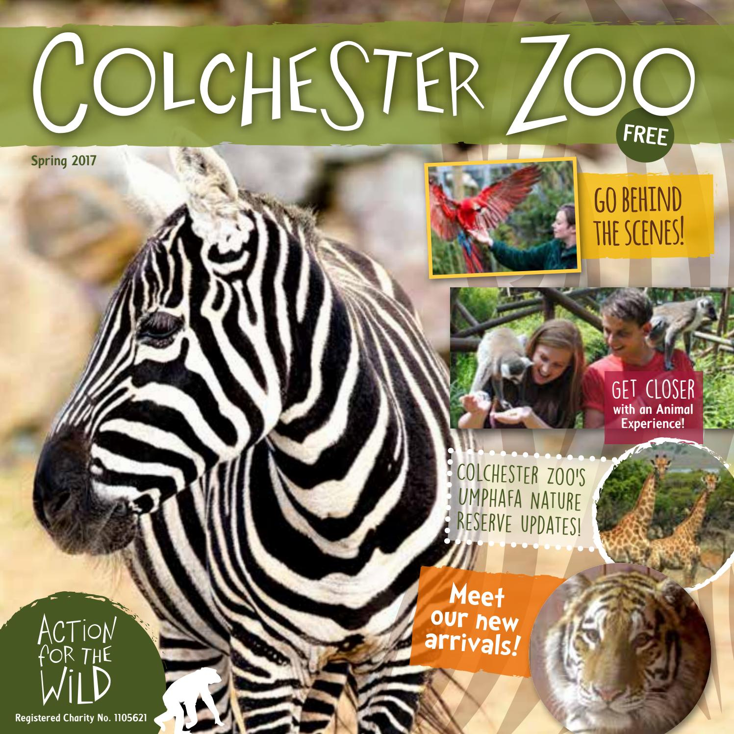 Colchester Zoo Magazine Spring 2017 by Colchester Zoo - issuu
