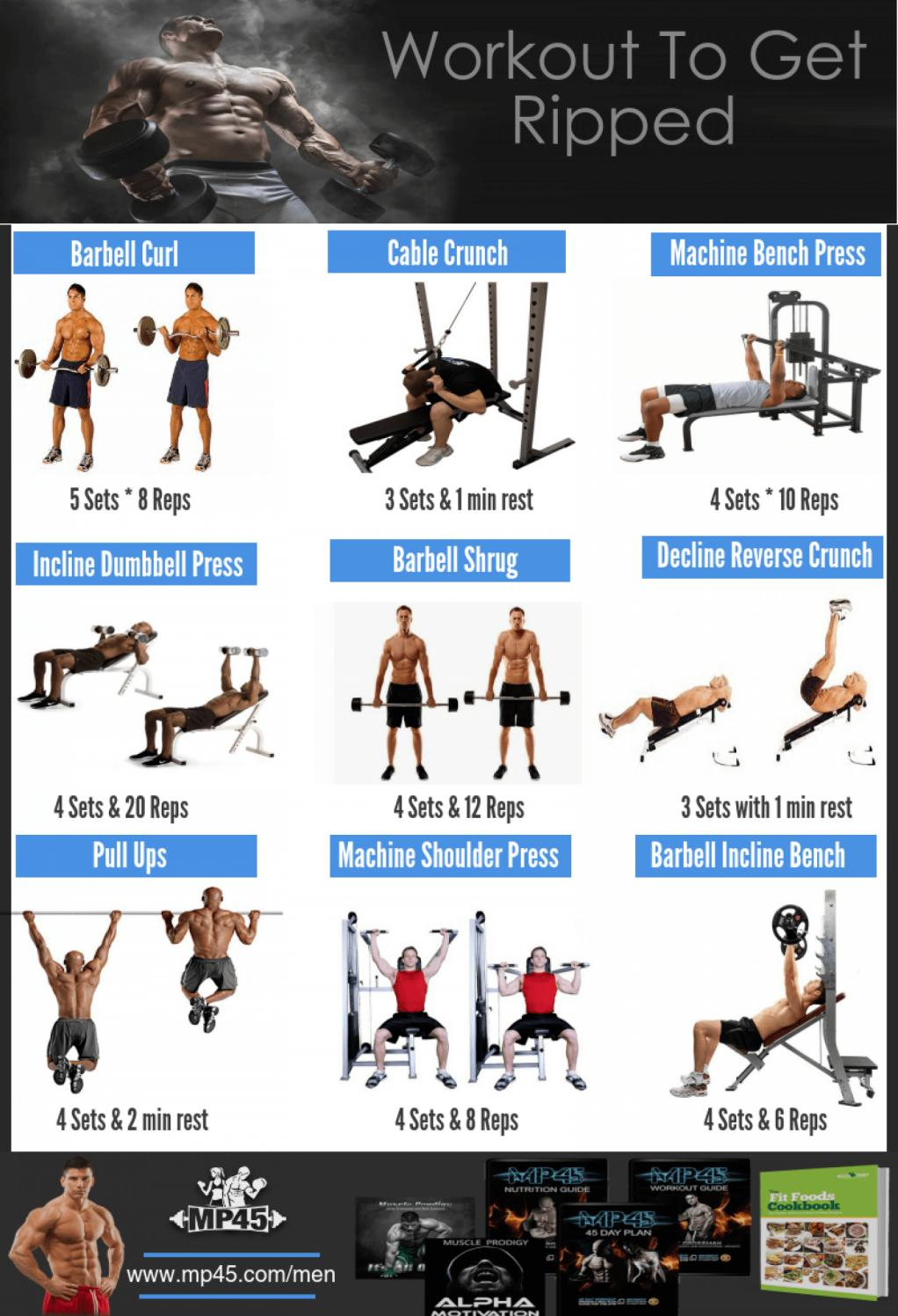 Follow These Top 9 Exercises To Get Ripped Fast by MP45 - Issuu