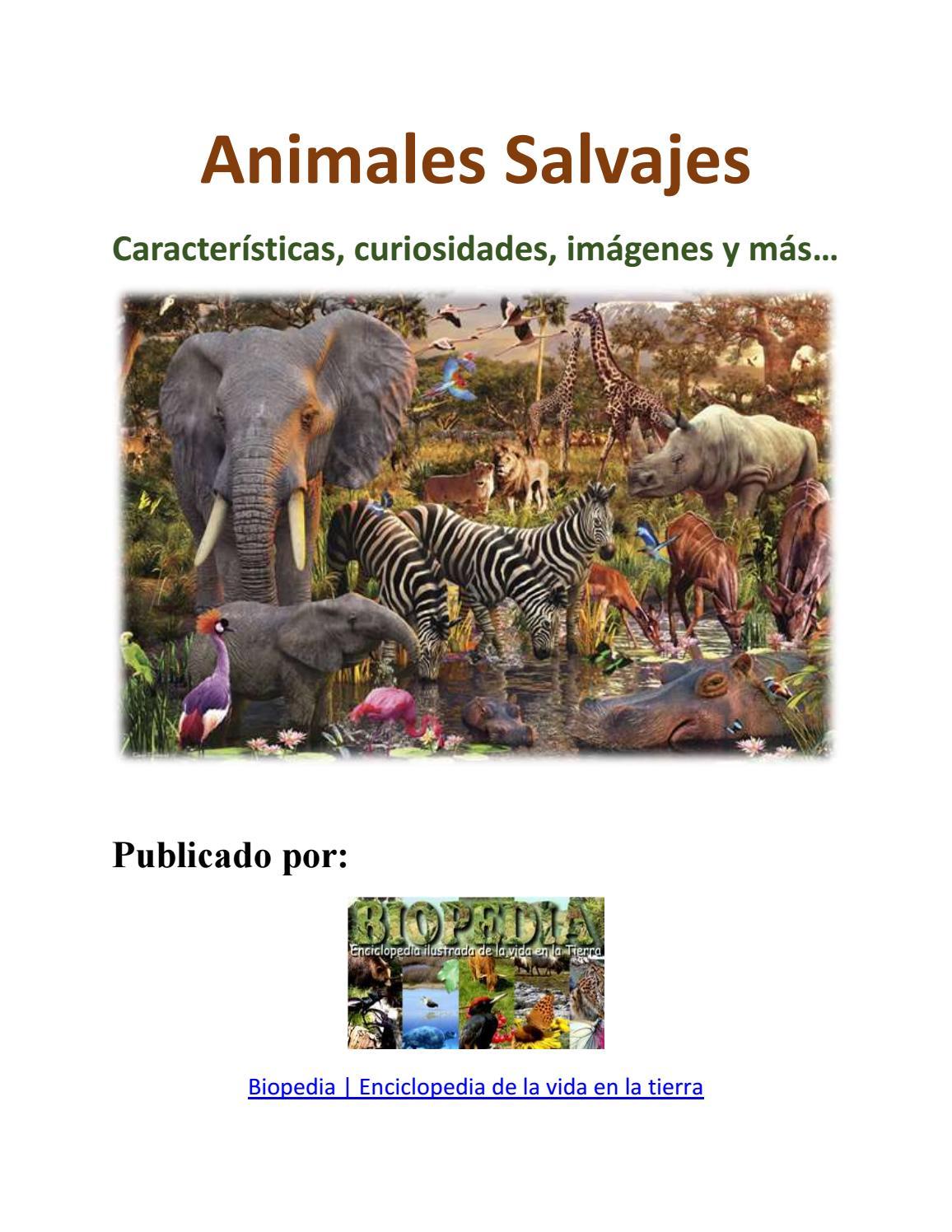 Animales salvajes by nando vieyra - issuu