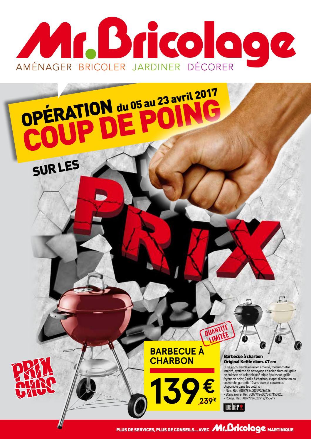 Mrbricolage Martinique Operation Coup De Poing Sur Les