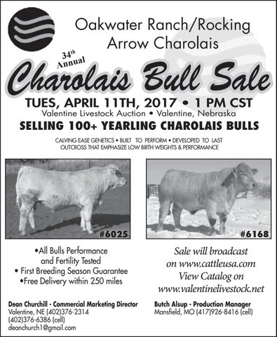 Oatwater Ranch/Rocking Arrow Charolais Bull Sale | April 11, 2017 ...
