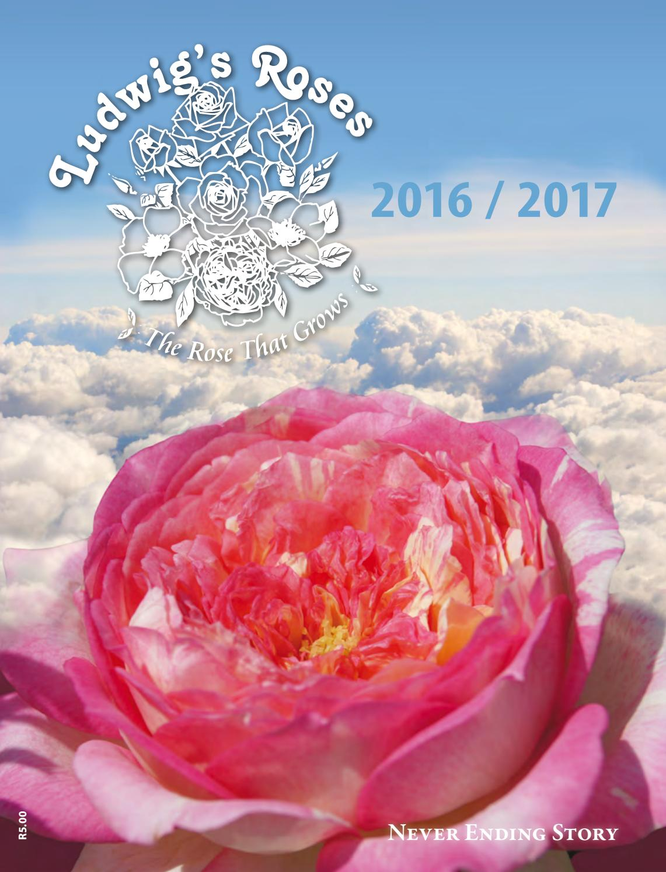 pacesetter miniature roses catalog  catalog  auto parts