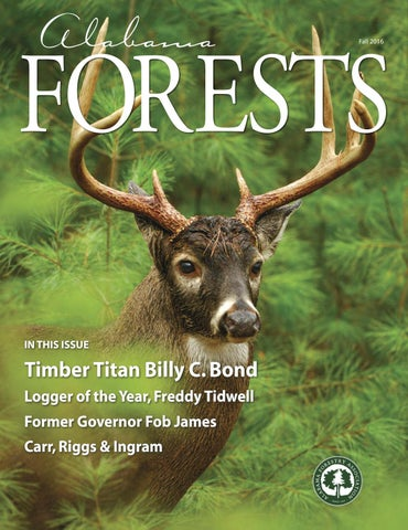 Alabama Forests Fall 2016 by Alabama Forestry Association - issuu