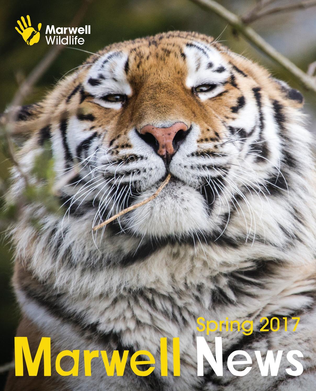 marwell zoo news spring 2017 by marwell wildlife