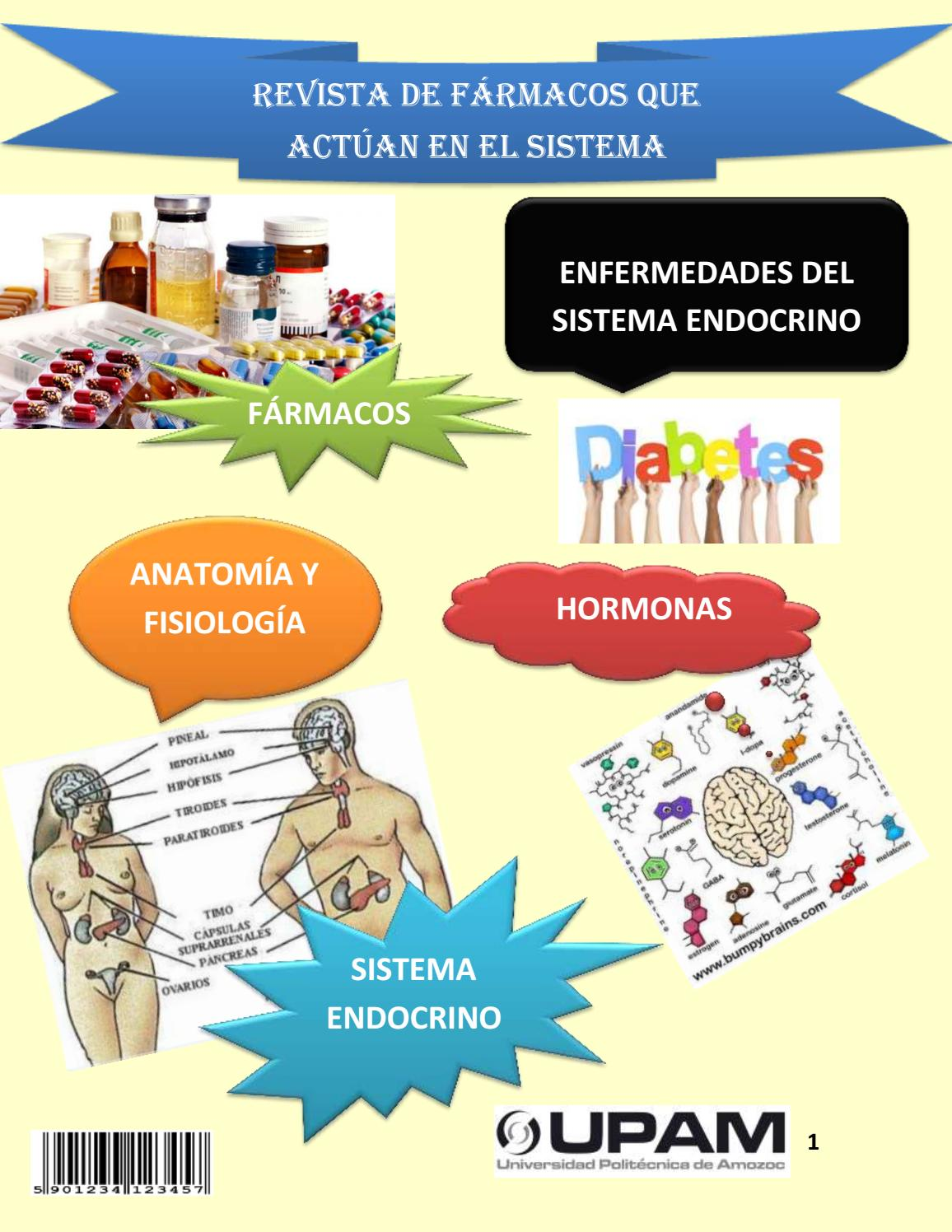Revista sistema endocrino by JONATHAN - issuu