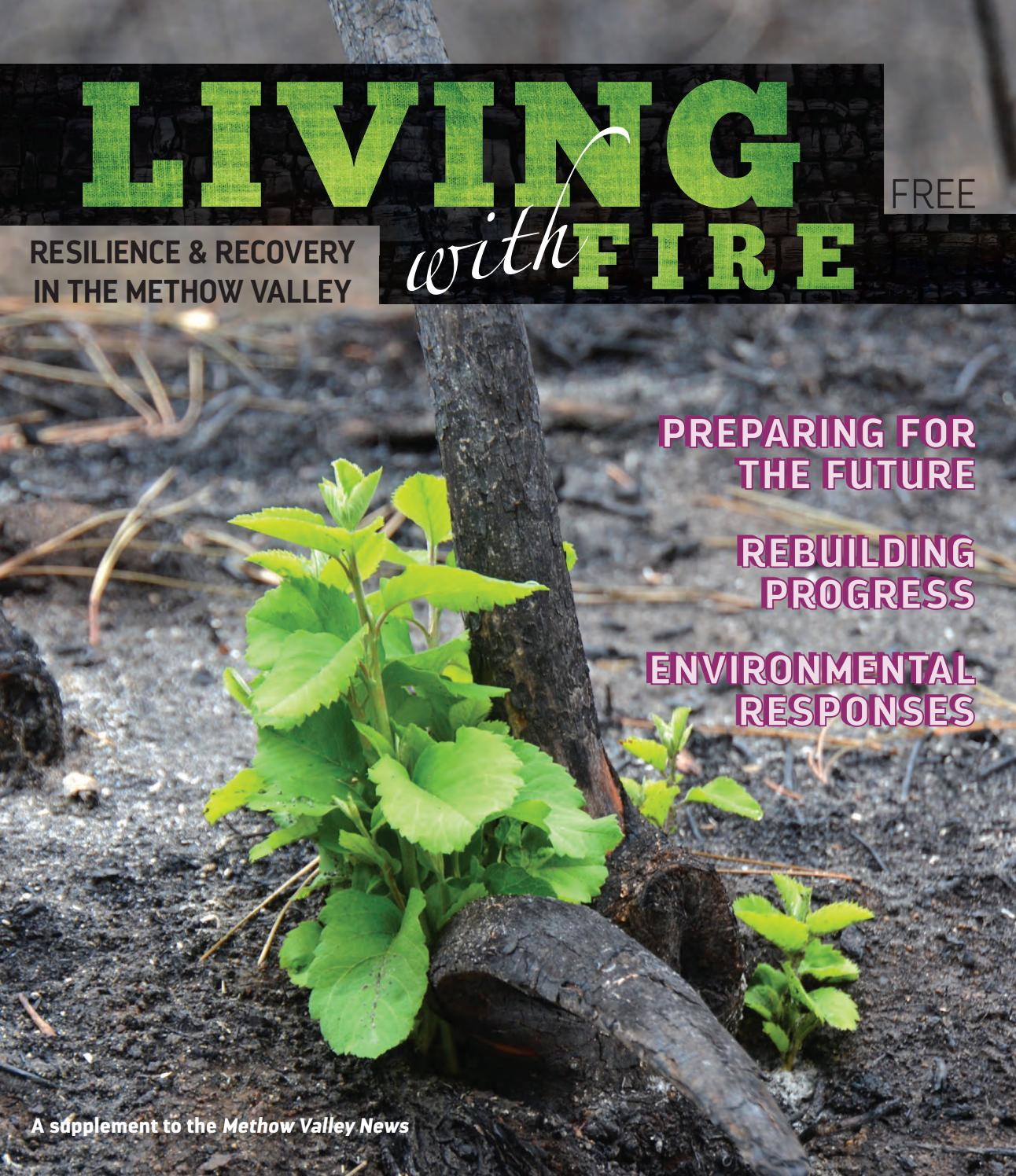 Underbrush In Owen Park Is So Dense Its >> Living With Fire By Methow Valley News Issuu