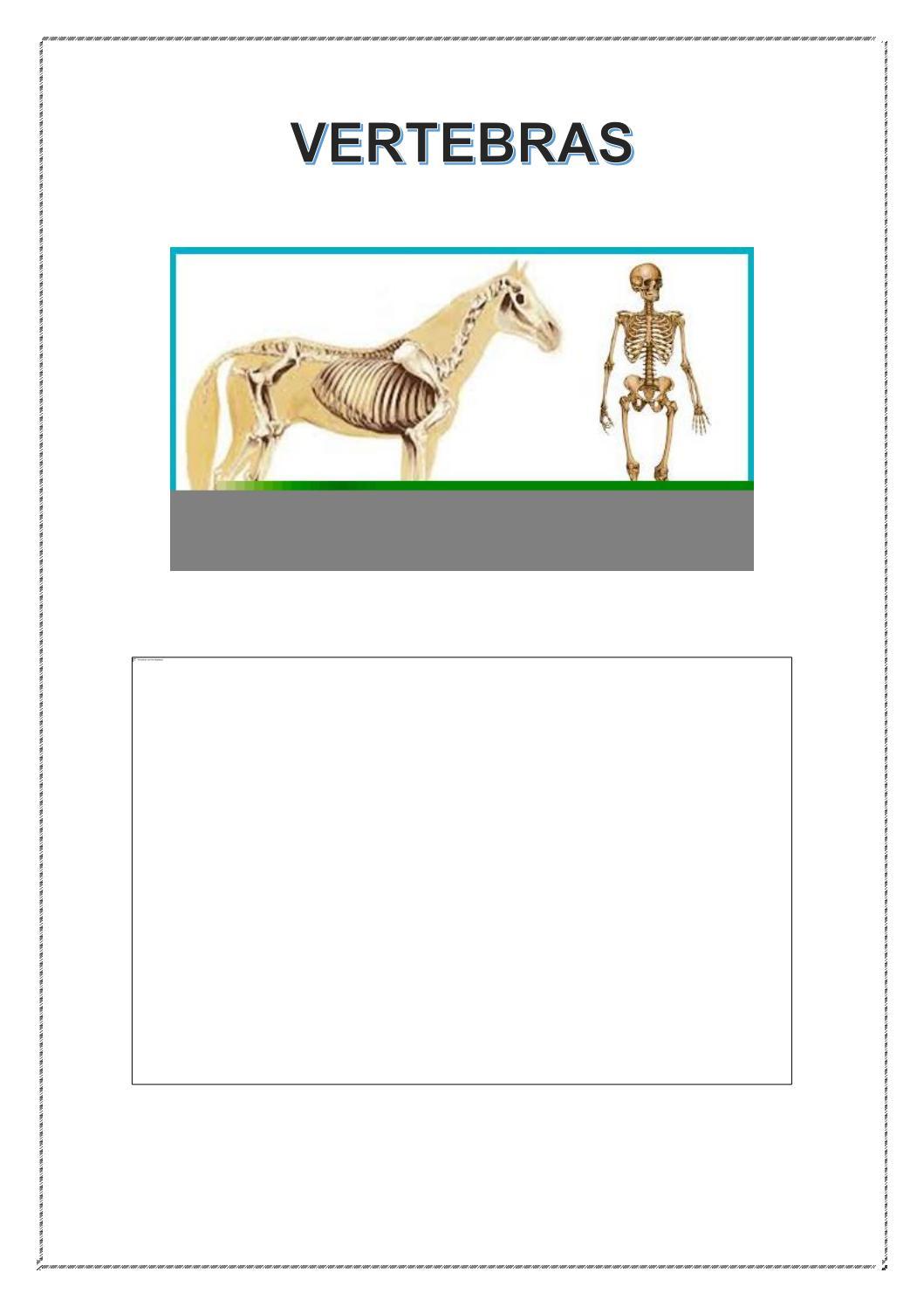 Medicina Veterinaria Y zootecnia by Nicole Gonzalez - issuu
