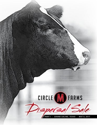 Circle M Farms Dispersal Sale Part I by Megan Favorite - issuu