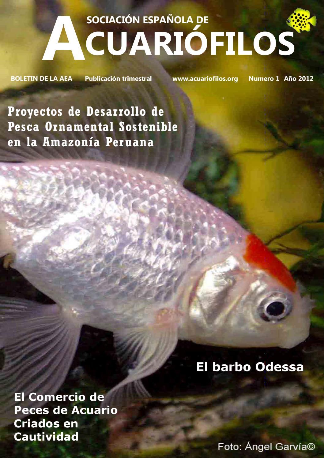 síntomas del parásito pez espada