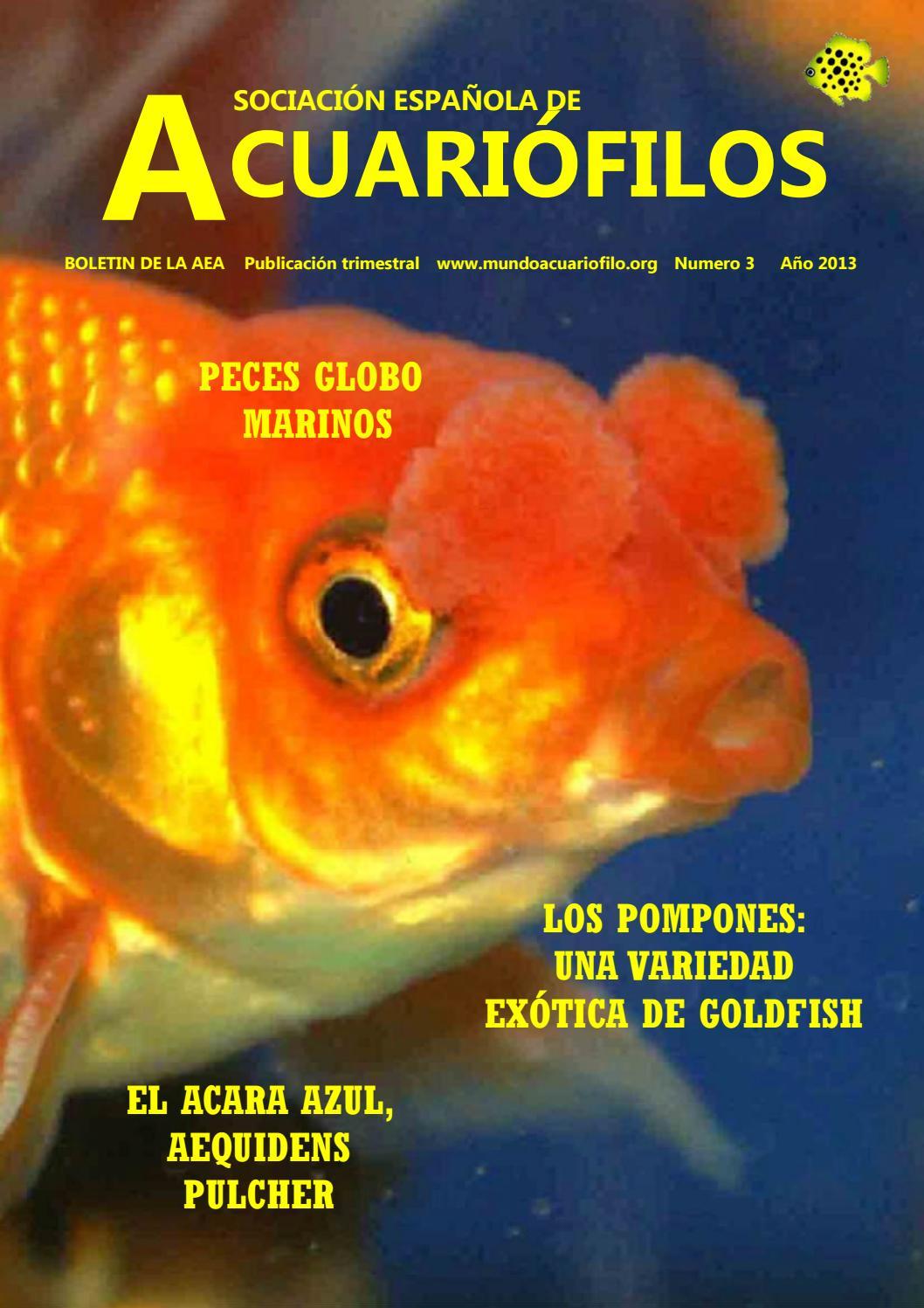 Boletín Asociación Española de Acuaristas No. 3 by La Magia de los ...