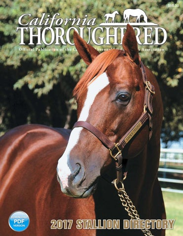 California Thoroughbred 2017 Stallion Directory by CTBA - issuu