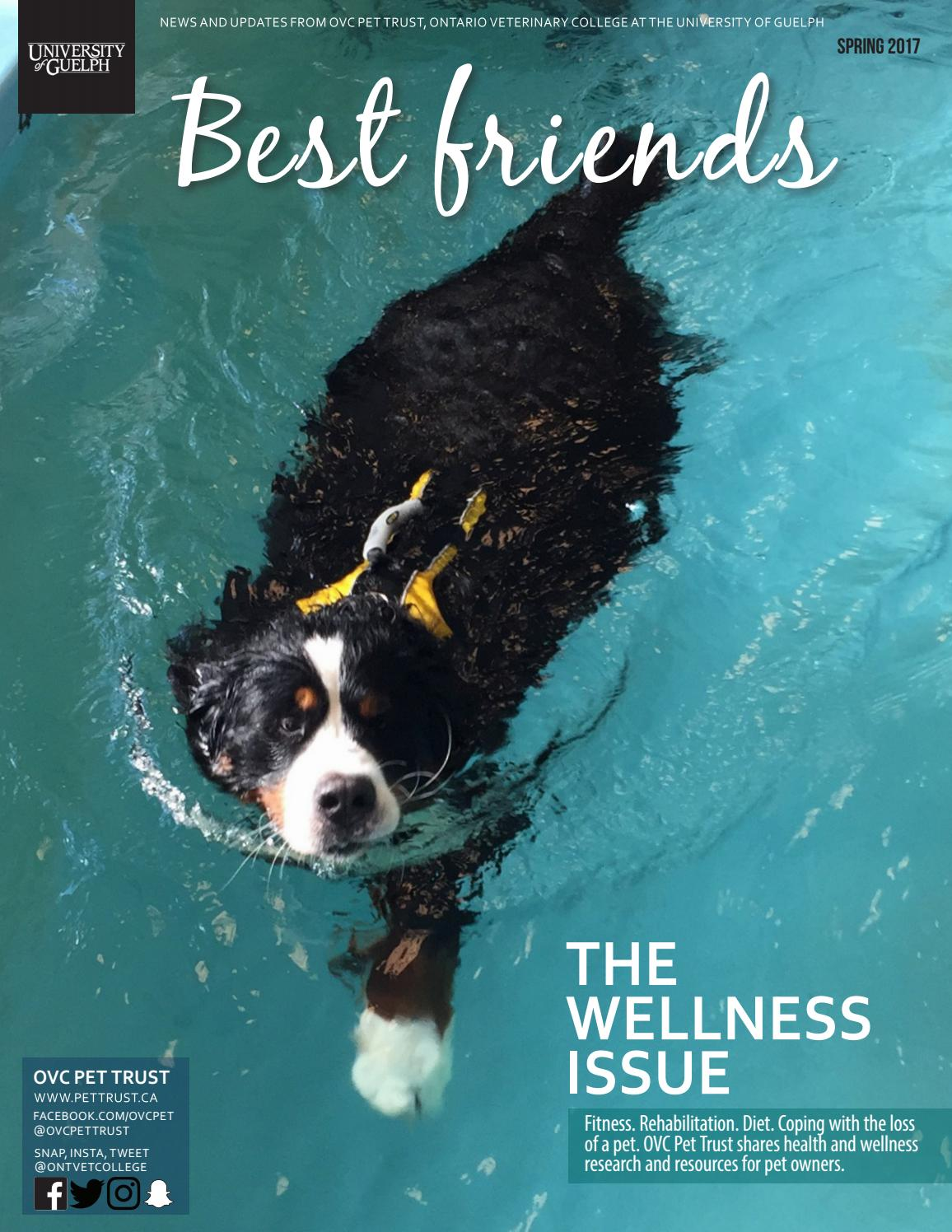 Best Friends, Pet Magazine, Ontario Veterinary College, Spring 2017 ...