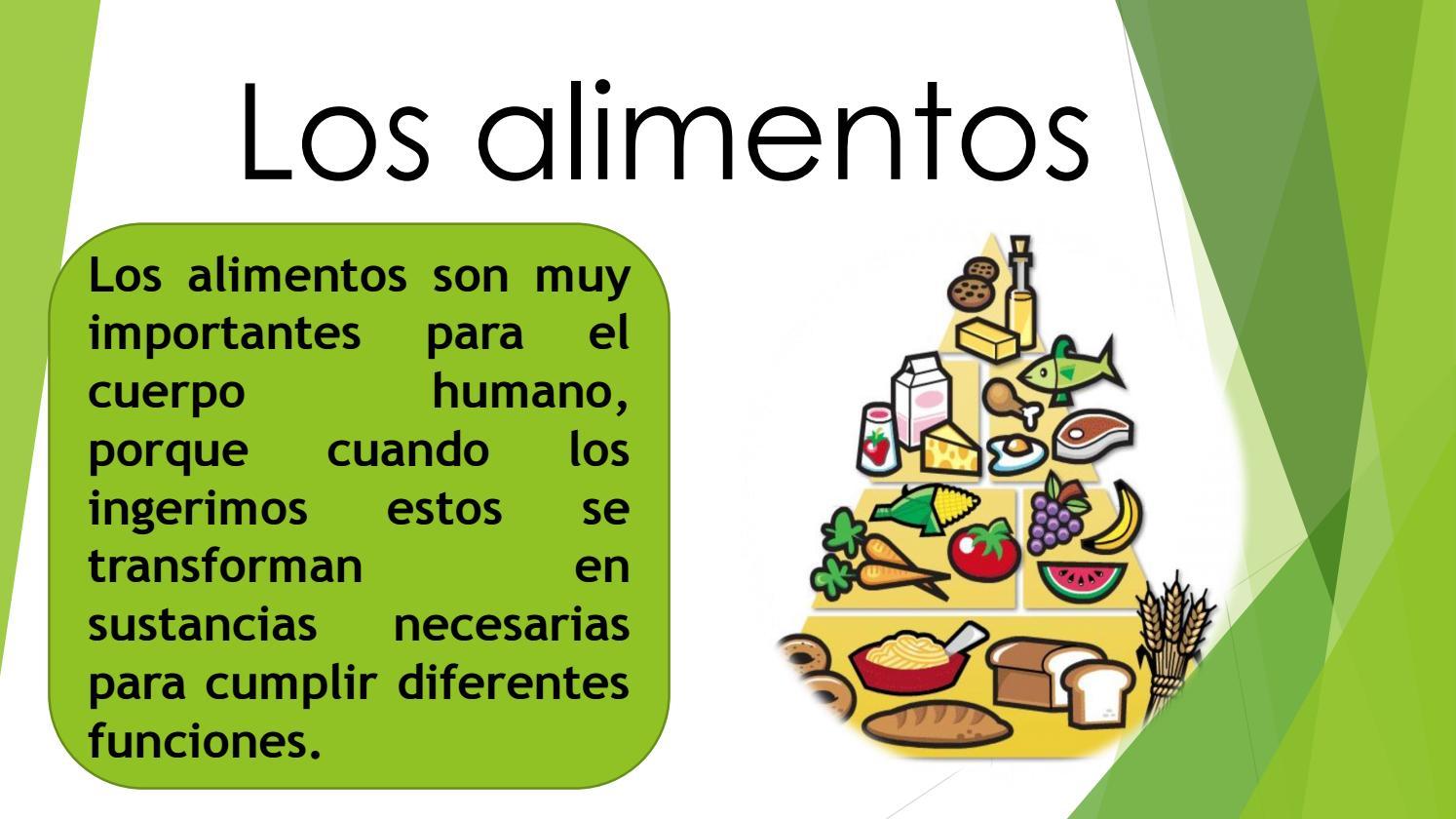 Alimentos seg n su valor nutritivo by liz issuu for Porque son importantes los arboles wikipedia