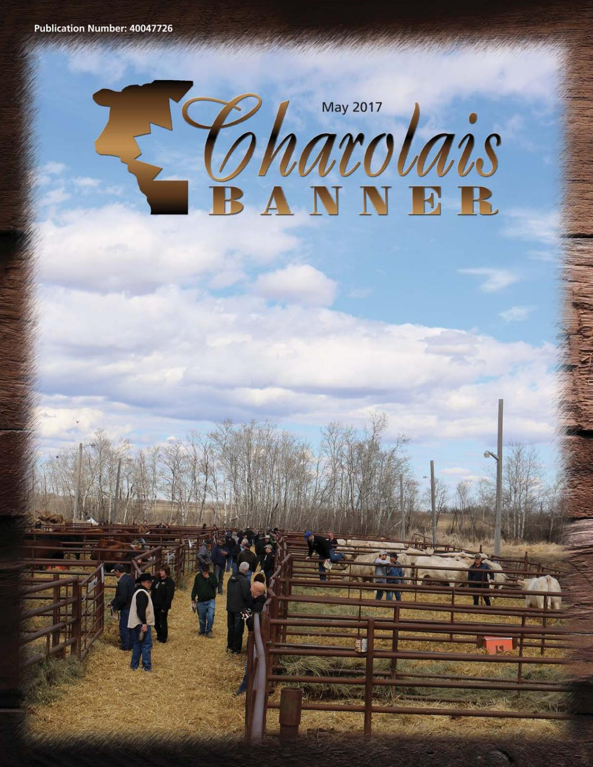 May 2017 charolais banner web by Charolais Banner - issuu