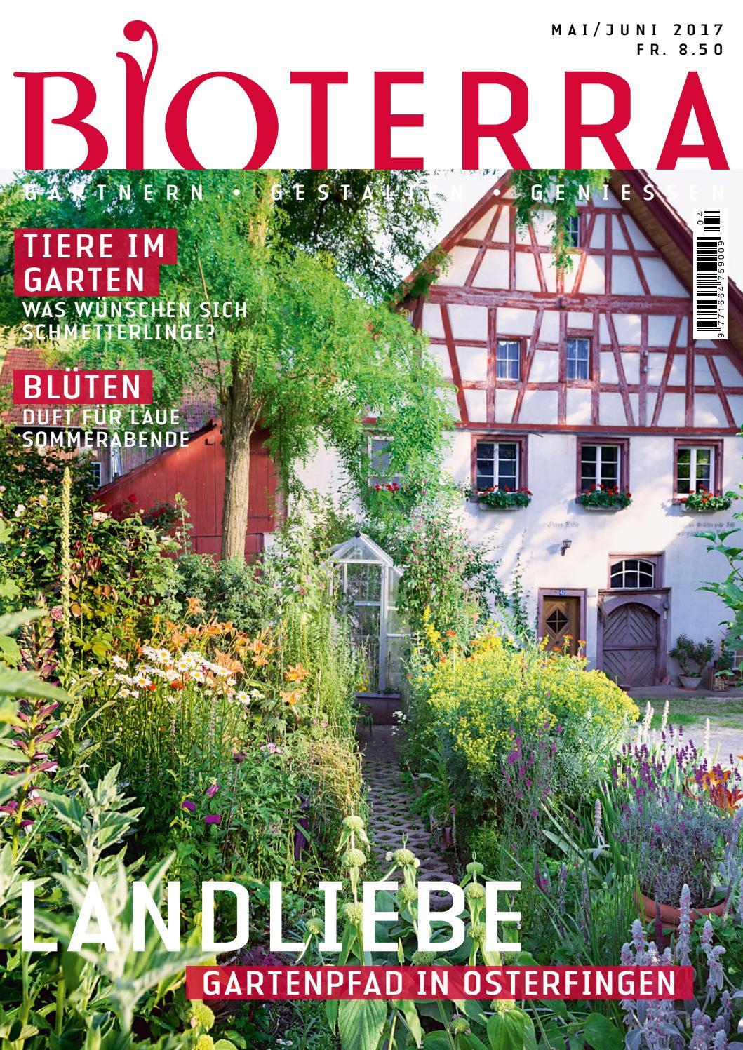 """der Pflanzenarzt unter den Blumen ! # Die Heil-Nelke /""""Silene/"""""""