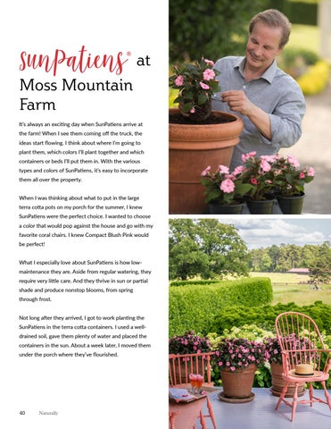 Page 40 of Sun Patiens at Moss Mountain Farm