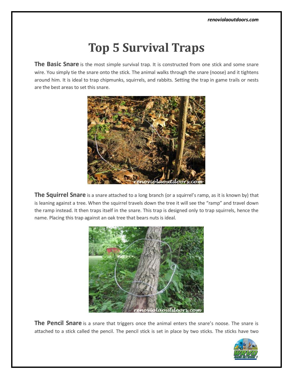 Top Forest Survival Traps : WRVO Radio Network1 by WRVO Radio