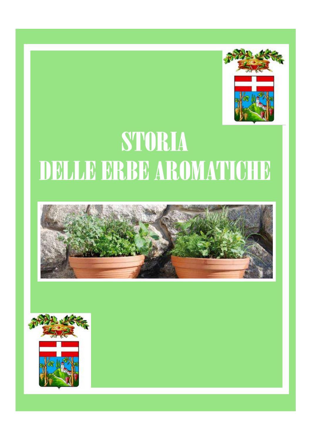 Miniatura Albero inverno i i casa giardino semi sementi lacrime-pino