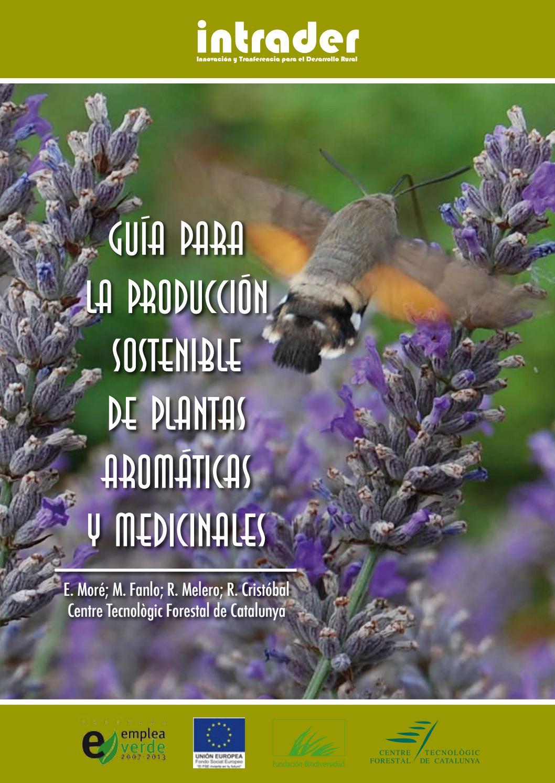 Guia Para La Produccion Sostenible De Plantas Aromaticas Y Medicinales By Ovatsug Aipat Issuu